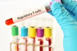 Les acides biliaires contribuent à réguler l'immunité et l'inflammation intestinales