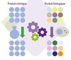Les médicaments chimiques diffèrent des médicaments biologiques car produits par synthèse chimique, ils sont constitués d'une population moléculaire homogène et reproductible du même principe actif (Source ANSM)