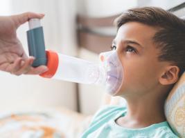L'asthme touche un enfant sur 10. Un déséquilibre entre les bactéries et les levures, dans le microbiote intestinal du nouveau-né pourrait favoriser le risque d'asthme plus tard dans la vie (Visuel Fotolia)