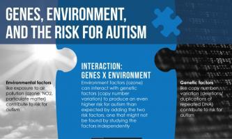 Niveau de variation génétique élevé et exposition à l'ozone et risque encore plus élevé de développer l'autisme.