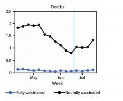 L'étude suggère une baisse possible de la protection vaccinale contre l'infection confirmée par le SRAS-CoV-2 mais une protection toujours solide contre les formes sévères de COVID-19 (et donc le risque d'hospitalisation et décès associés) (Visuel MMWR).