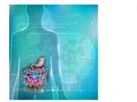 Une technique qui utilise des cellules autologues modifiées pour traiter la maladie de Crohn se révèle ici efficace avec cette recherche menée in vitro