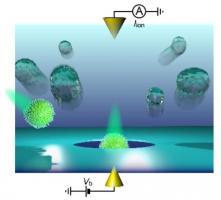 Un outil diagnostique numérique basé sur l'analyse par nanopore et l'intelligence artificielle, est capable de caractériser des virions individuels en fonction de leurs caractéristiques physiques distinctes