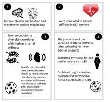 Il existe une corrélation significative entre la diversité du microbiome intestinal et la santé des artères