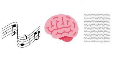 Pour certaines personnes, la musique est « spéciale » et « ça se lit » dans leur réponse neurale.