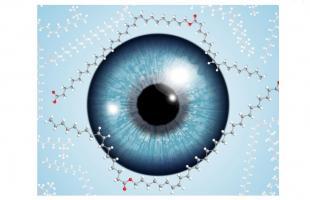 Un acide gras à très longue chaîne est essentiel pour préserver la couche lipidique du film lacrymal optiquement transparente