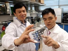 L'approche combine une nouvelle façon de délivrer, via un patch de micro-aiguille, des médicaments déjà connus pour transformer les graisses blanches stockant de l'énergie en graisse brune énergétique.