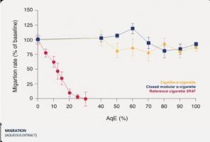 L'exposition à la fumée de cigarette inhibe la cicatrisation des plaies vasculaires en ralentissant le taux de migration endothéliale