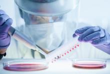 Cette analyse génétique d'échantillons de virus confirme que la variante d'origine britannique, B.1.1.7, est 40 à 50% plus transmissible que le virus d'origine (Visuel Adobe Stock 331690395)