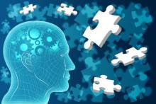 En  cultivant des cellules souches pluripotentes issues de patients schizophrènes, ils identifient une voie de signalisation liée à un risque plus élevé de développer la maladie (Visuel Fotolia).