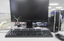 La présence de petites plantes d'intérieur au bureau permet de réduire le stress