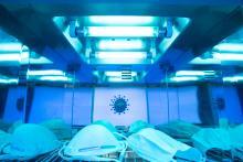 Il existe en effet 2 méthodes de désinfection, la chimique et la physique, par rayon UVC (Visuel AdobeStock_339116146)
